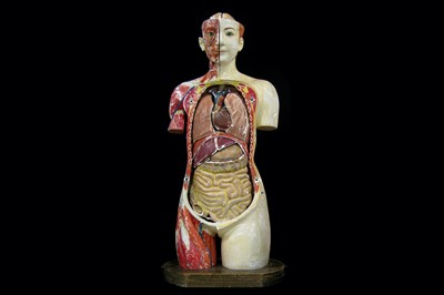 Lot 32-A FINE 1930'S JAPANESE LIFE-SIZE ANATOMICAL MODEL ...
