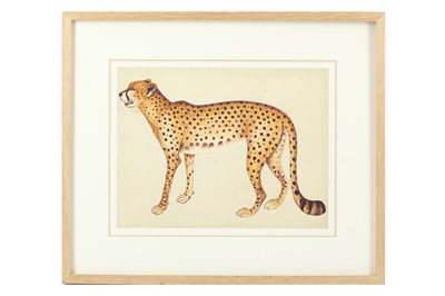 Lot 325 - A STUDY OF A CHEETAH AFTER THE IMPEY ALBUM