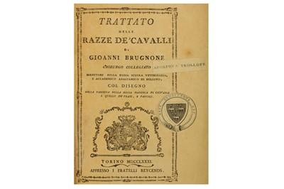 Lot 33-Horses.- Brugnone (Carlo Giovanni)