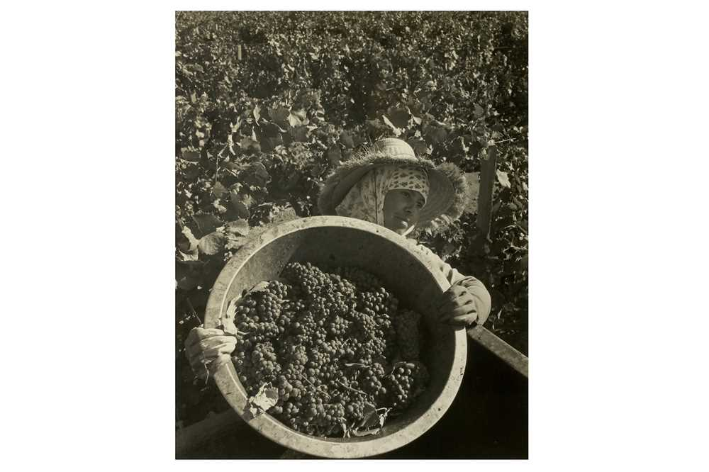 Lot 34-Ansel Adams (1902 - 1984)