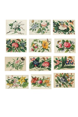 Lot 131 - A SET OF TWELVE CHINESE PITH PAPER PAINTINGS OF INSECTS AND FLOWERS.