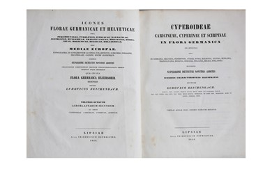 Lot 91-Natural History.- Reicheinbach (Ludovic)