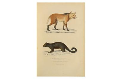 Lot 48-Natural History.- Flourens, [M. J. P.] [Buffon, Cuvier and De Lacépède]