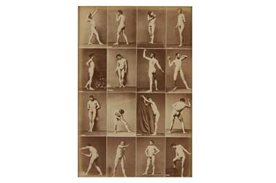 Lot 1013 - Nude studies, c. 1880s