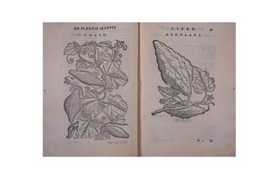 Lot 317-Botany.- Alpinus (Prospero)