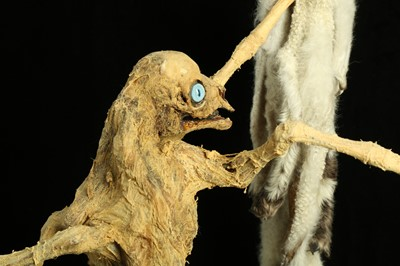 Lot 3 - THE EIGHT LEGGED STRIPPING LAMB, TAXIDERMY ART BY ANDRE ROBOLOBAVICH