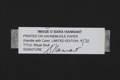 Lot 31 - SARAH HANNANT (BRITISH): A LIMITED EDITION PRINT 'RITUAL SKULL'