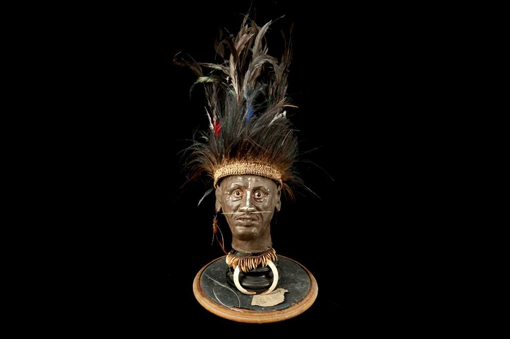 Lot 33 - A MODEL OF A TRIBAL ELDERS' HEAD A NEW GUINEA  TRIBAL HEAD UNDER A LARGE 19TH CENTURY GLASS DOME