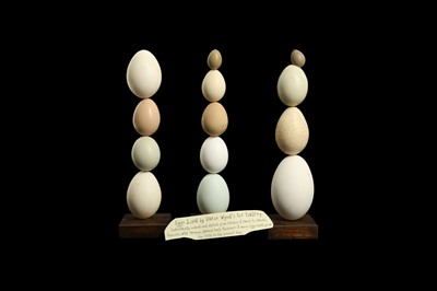 Lot 17 - THREE EGG SCULPTURES FROM VIKTOR WYND'S DOMESTIC POULTRY