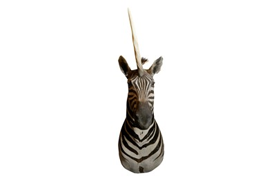 Lot 4 - A TAXIDERMY SHOULDER MOUNT OF A STRIPED UNICORN
