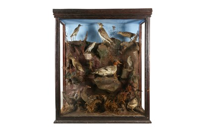 Lot 79 - A LARGE VICTORIAN TAXIDERMY CASE OF ELEVEN WADERS