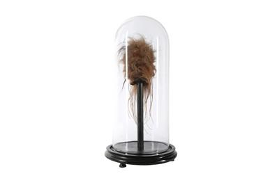 Lot 35 - A FAUX SHRUNKEN HEAD (LLAMA SKIN) UNDER A GLASS DOME