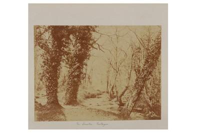 Lot 26 - John Dillwyn Llewelyn (1810-1882)