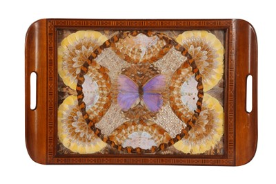 Lot 94 - TAXIDERMY / ENTOMOLOGY: A MID 20TH CENTURY TRAY DECORATED WITH BUTTERFLY WINGS